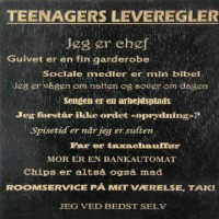 Teenagers leveregler